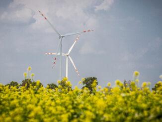 Tauron ze wzrostem energii elektrycznej z farm wiatrowych
