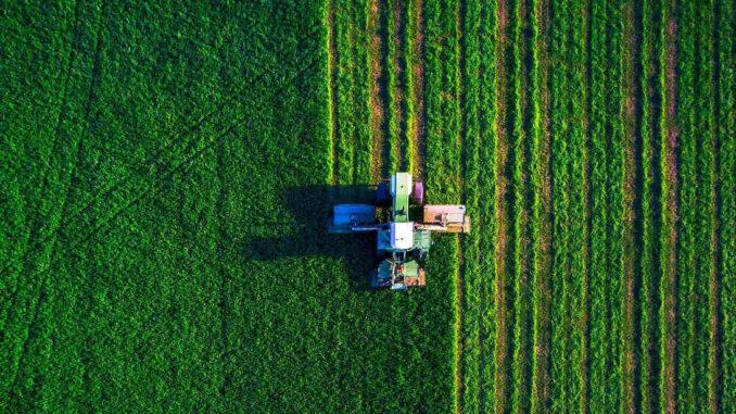 Jak działa energia biomasy i jak ją pozyskiwać?
