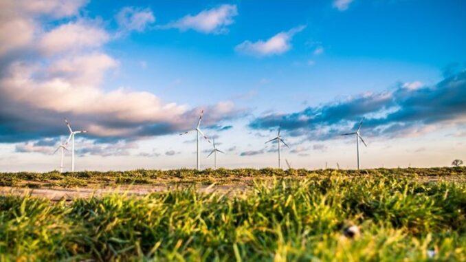 Powstaną trzy elektrownie wiatrowe w Klastrze Zgorzeleckim