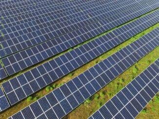 Grupa PGE wybuduje farmy fotowoltaiczne bez wsparcia